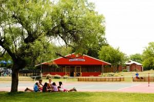 Under tree near Hondos